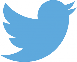 Twitter Inc (NYSE:TWTR), Biz Stone, Top management, broadcast mechanism