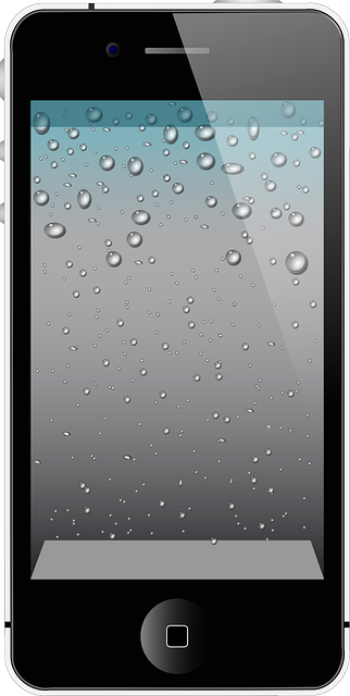 Apple AAPL IPhone